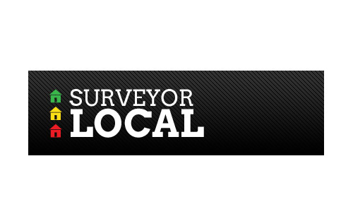 Surveyor Local